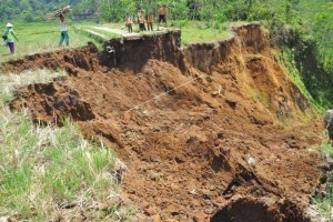 Masyarakat Banjarnegara Diimbau Mewaspadai Longsor Dan Pohon Tumbang