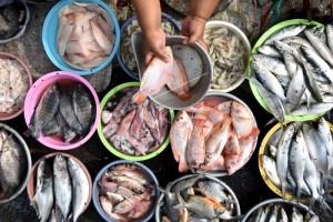 Pakar: Makanan Berbahan Ikan Tingkatkan Konsumsi Ikan