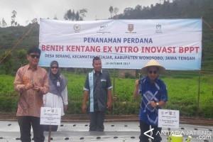 BPPT Tanam Benih Kentang Exvitro di Dieng