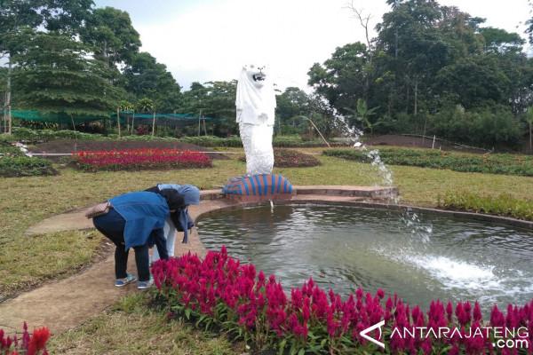 Taman Bunga Celosia Lengkapi Objek Wisata Semarang