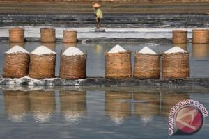 DPR RI Mendorong Percepatan Pembangunan Pabrik Garam