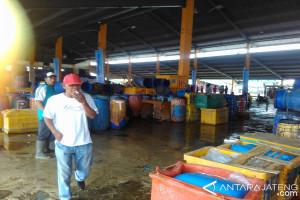 Produksi ikan di TPI Pekalongan capai 50 ton