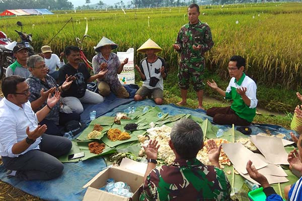 Panen lebih awal, petani Banjarnegara gelar Kupengan