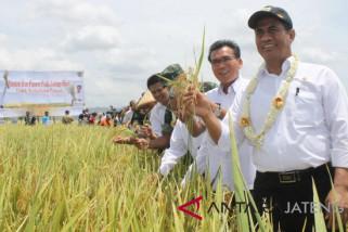 Mentan: Pemerintah tak inginkan petani alami kerugian
