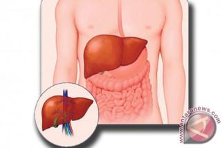 Hepatitis C penyakit peradang hati yang disebabkan infeksi virus