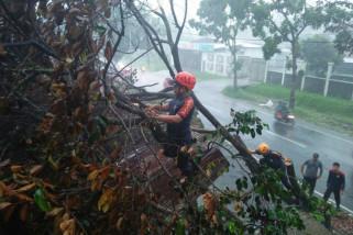 Berpotensi cuaca ekstrem, masyarakat diminta waspada
