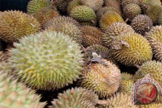 Durian tak bisa secara bebas dikonsumsi