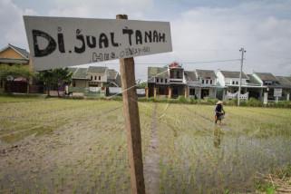 Prof. Supriyadi: Mutu tanah Jawa menurun