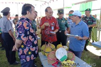 Festival Durian Wediasin diharapkan angkat agrowisata Wonosobo