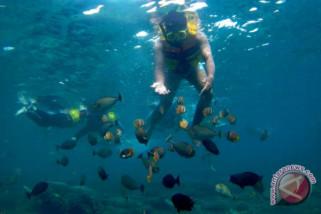 Gempa Lombok, Agen pariwisata: Banyak wisatawan batal ke Bali