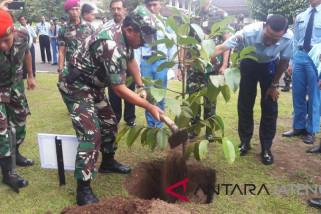 Panglima TNI tanam manggis di SMA TN