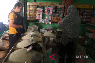 Panen raya, harga beras di Purwokerto cenderung turun