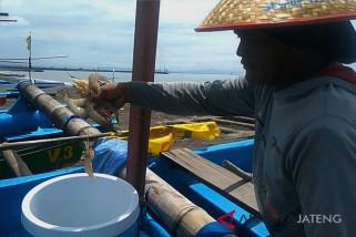 Jelang sedekah laut, nelayan Cilacap siapkan pasokan ikan