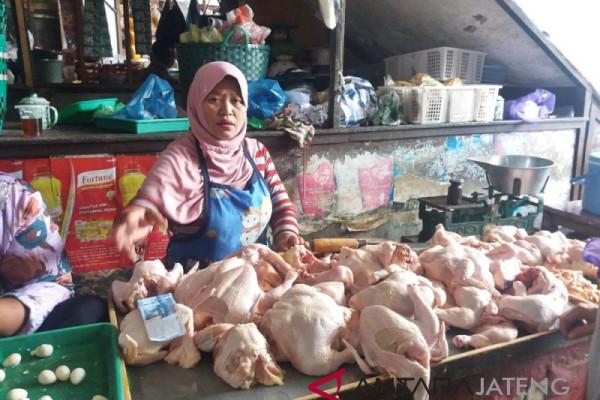 Harga daging ayam di Temanggung capai Rp34.000/kg