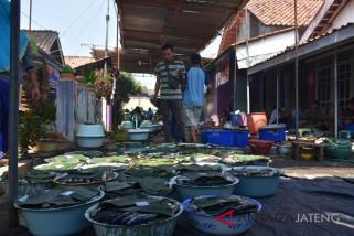 TPI Pekalongan jamin stok ikan cukupi kebutuhan masyarakat
