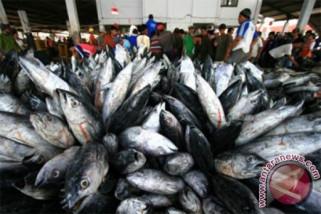 Konsumsi lemak ikan cegah risiko penyakit jantung