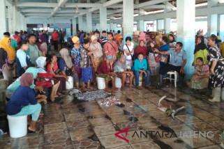 Turun, ikan hasil tangkapan nelayan Jepara