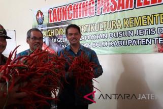 Pemerintah dorong pembentukan pasar lelang hortikultura