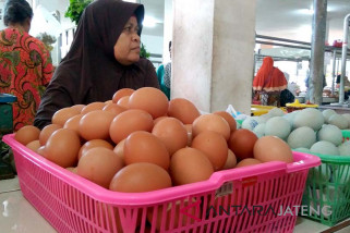 Jelang Ramadhan, harga telur dan daging ayam ras naik (VIDEO)