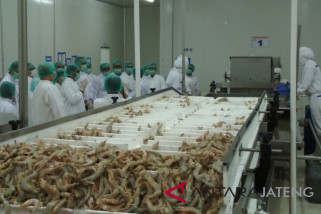 Meningkat, ekspor olahan hasil perikanan ke Jepang
