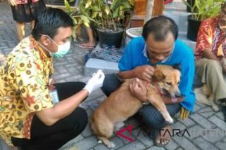 Antisipasi Rabies, anjing di Boyolali divaksin