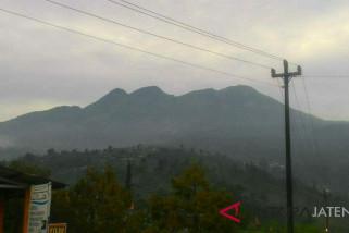 Diguyur hujan, kebakaran hutan di Gunung Lawu padam