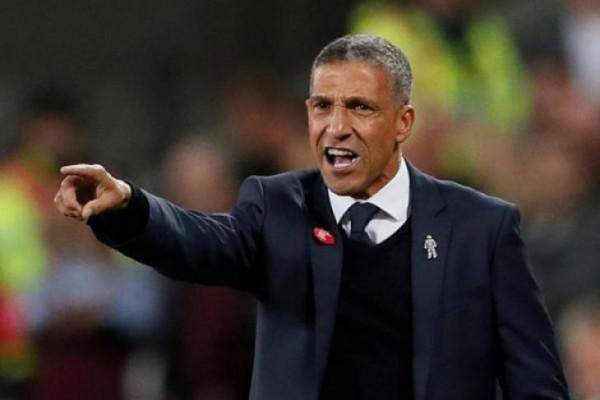 Hughton sebut Andone siap debut untuk Brighton