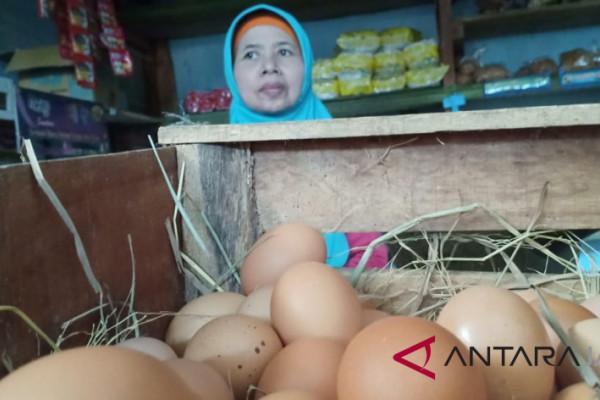 Musim hajatan, harga cabai dan telur di Pekalongan membumbung