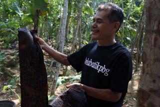 Batik khas Limbasari Purbalingga mulai diminati konsumen