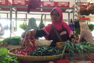 Musim kemarau pengaruhi kenaikan harga sayuran