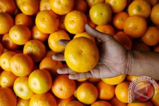 Studi: Sering konsumsi jeruk bisa sebabkan penyakit mata
