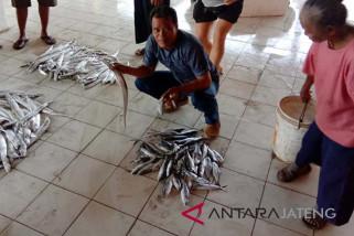 Nelayan Cilacap masuki masa panen ikan