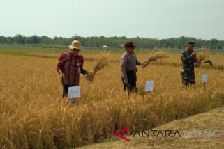 Pakar Unsoed: tingkatkan sosialisasi pertanian terpadu