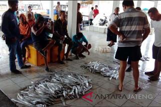 Masa panen, transaksi pelelangan ikan di Cilacap meningkat