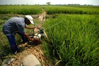 Mesin pompa air untuk pengairan sawah