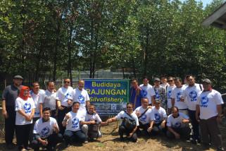 Indonesia berhasil kembangkan rajungan dengan budi daya