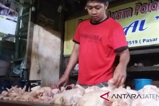 Pasokan lancar, harga daging ayam mulai turun