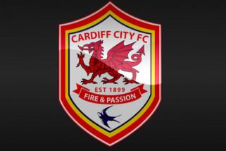 Cardiff datangkan gelandang Arter dan Camarasa