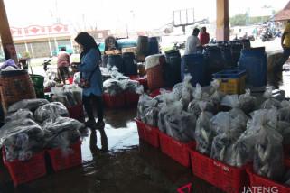 Nelayan mulai bongkar hasil tangkapan, aktivitas TPI Pekalongan menggeliat