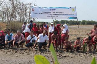 PLN Area Semarang bersama pelajar tanam 5.000 mangrove