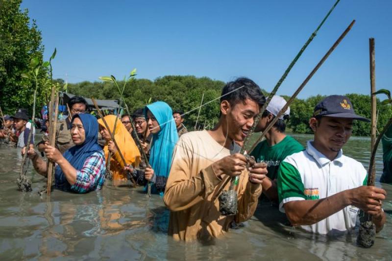 Aksi penanaman pohon bakau