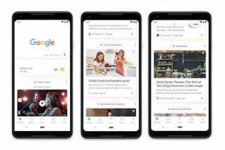 Google perbarui feed diganti nama menjadi Discover