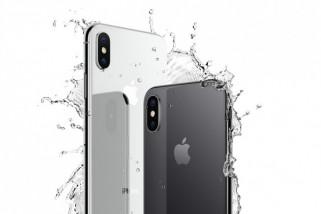 iPhone XC, versi