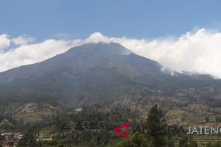 BPBD Temanggung nyatakan kebakaran hutan Sumbing sudah padam