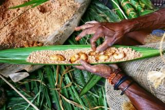 Pesta Ulat Sagu Kombay Papua ritual yang memiliki pesan moral