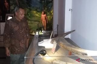 Museum Sangiran terus berbenah