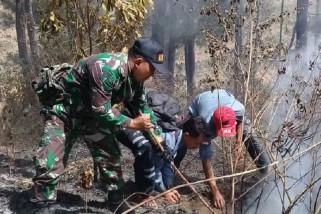 Hutan di lereng Gunung Sumbing masih terbakar