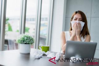 Bila sakit dan hidung meler, jangan masuk kerja