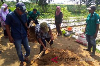 Puluhan penyandang difabel ikuti pelatihan pertanian di Unsoed (VIDEO)