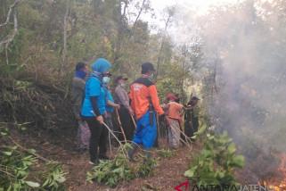 Kebakaran hutan di lereng Merbabu padam